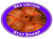 Sea Urchin Photo Shirt-7034