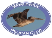 Pelican Photo Shirt-3916